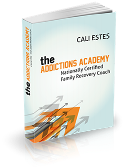 The Addictions Academy - Family Recovery Coach